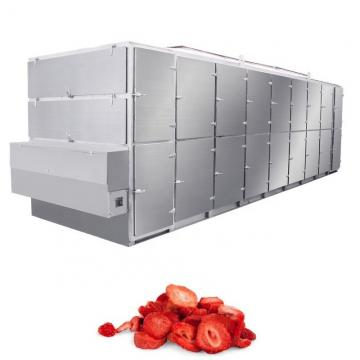 Cooling System Drying System for Fruit and Vegetable Wire Mesh Conveyor Belt South Africa